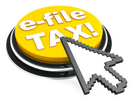 File your Wealth Tax Return online